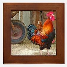 Funny Roosters Framed Tile