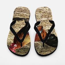 Unique Birds rooster Flip Flops