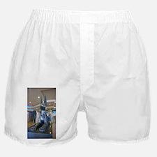 Luxor Las Vegas Anubis 2015 Boxer Shorts