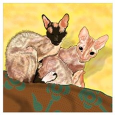 Tiger and George - the Cornish Rex Cats Poster