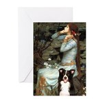 Ophelia & Border Collie Greeting Cards (Pk of 20)
