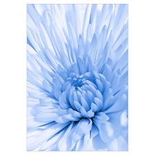 Blue Mum