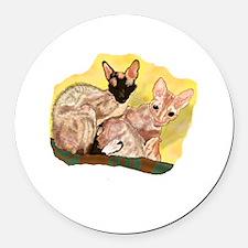 Tiger & George - Cornish Rex Cats Round Car Magnet