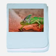 Chameleon baby blanket