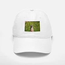 Meerkat Baseball Baseball Cap