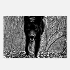 Black Wolf Postcards (Package of 8)