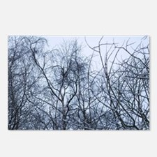 Pollock Branches Postcards (Package of 8)