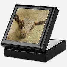Baby Goat Socke Keepsake Box