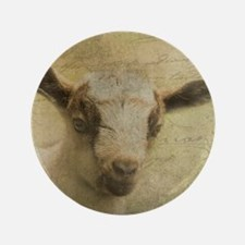 Baby Goat Socke Button
