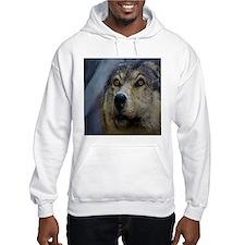 Brown wolf Hoodie