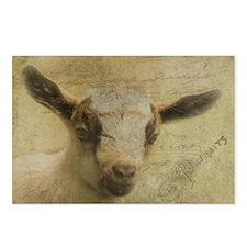 Baby Goat Socke Postcards (Package of 8)