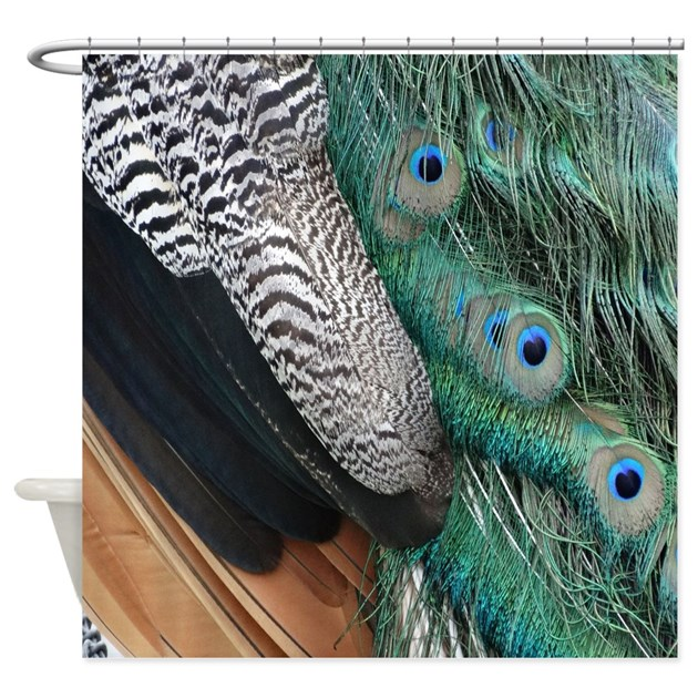 elegant peacock feathers shower curtain by joysdesignershop