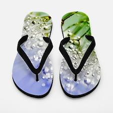 Sparkling Dandelion Flip Flops