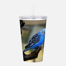 Blue Budgie Acrylic Double-wall Tumbler