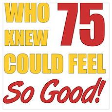Fun 75th Birthday Poster