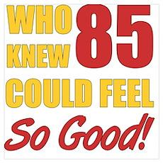 Fun 85th Birthday Poster