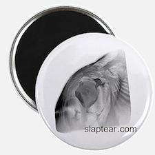 slaptear MRI magnet