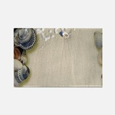 summer ocean beach seashells Magnets
