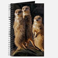 Unique Meerkat Journal