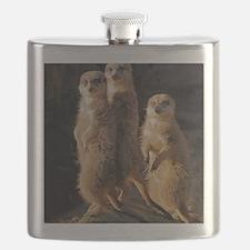 Meerkat Flask