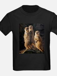 Sun Setting on the Meerkat Trio T-Shirt