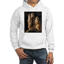 Sun Setting on the Meerkat Trio Jumper Hoody