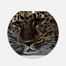 Spotted Cat of Mystery Silk Scree Ornament (Round)