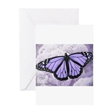 Cute Butterfly Greeting Card