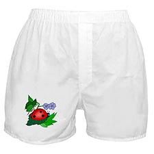 LADYBUG Boxer Shorts