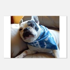 French Bulldog Pied Postcards (Package of 8)