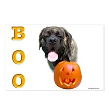 Boo Brindle2 Postcards (Package of 8)