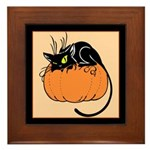 Cat w/ Pumpkin Framed Tile
