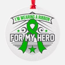 Spinal Cord Injury For My Hero Ornament