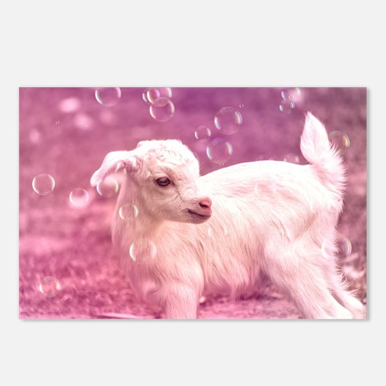 Baby Goat Whitey Postcards (Package of 8)