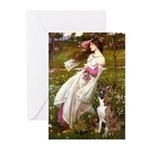 Windflowers & Boxer Greeting Cards (Pk of 20)