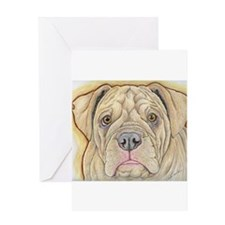 Olde English Bulldogge Greeting Cards