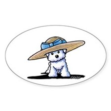bichon in Decal