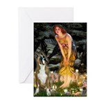 Fairies & Boxer Greeting Cards (Pk of 20)