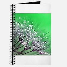 Dandelion_2015_0720 Journal