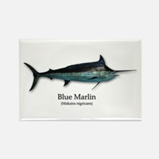 Blue Marlin Magnets