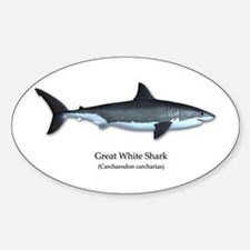 Great White Shark Decal