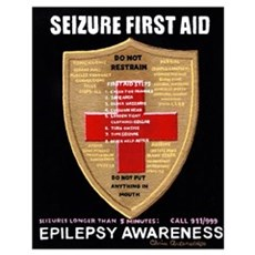 Seizure First Aid Shield Poster
