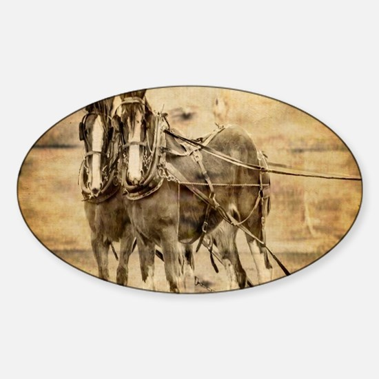western country farm horse Decal