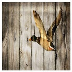 rustic western wood duck Canvas Art