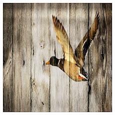 rustic western wood duck Poster