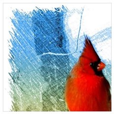watercolor winter red cardinal Poster