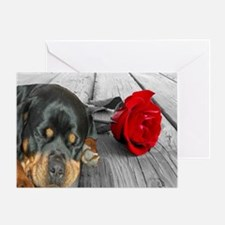 Rottweiler and Rose Greeting Cards