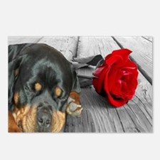 Rottweiler and Rose Postcards (Package of 8)