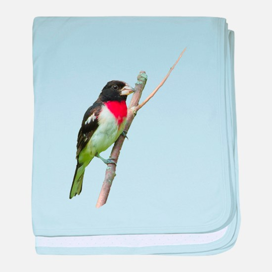Rose-breasted grosbeak baby blanket