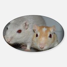 Gerbils Sticker (Oval)